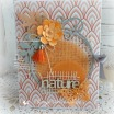 Album photo orangé 22.00€